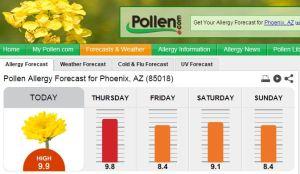 4.08.2015 pollen count