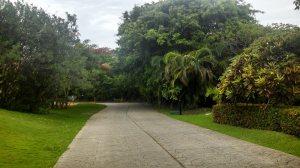 Cancun Jungle Run 2